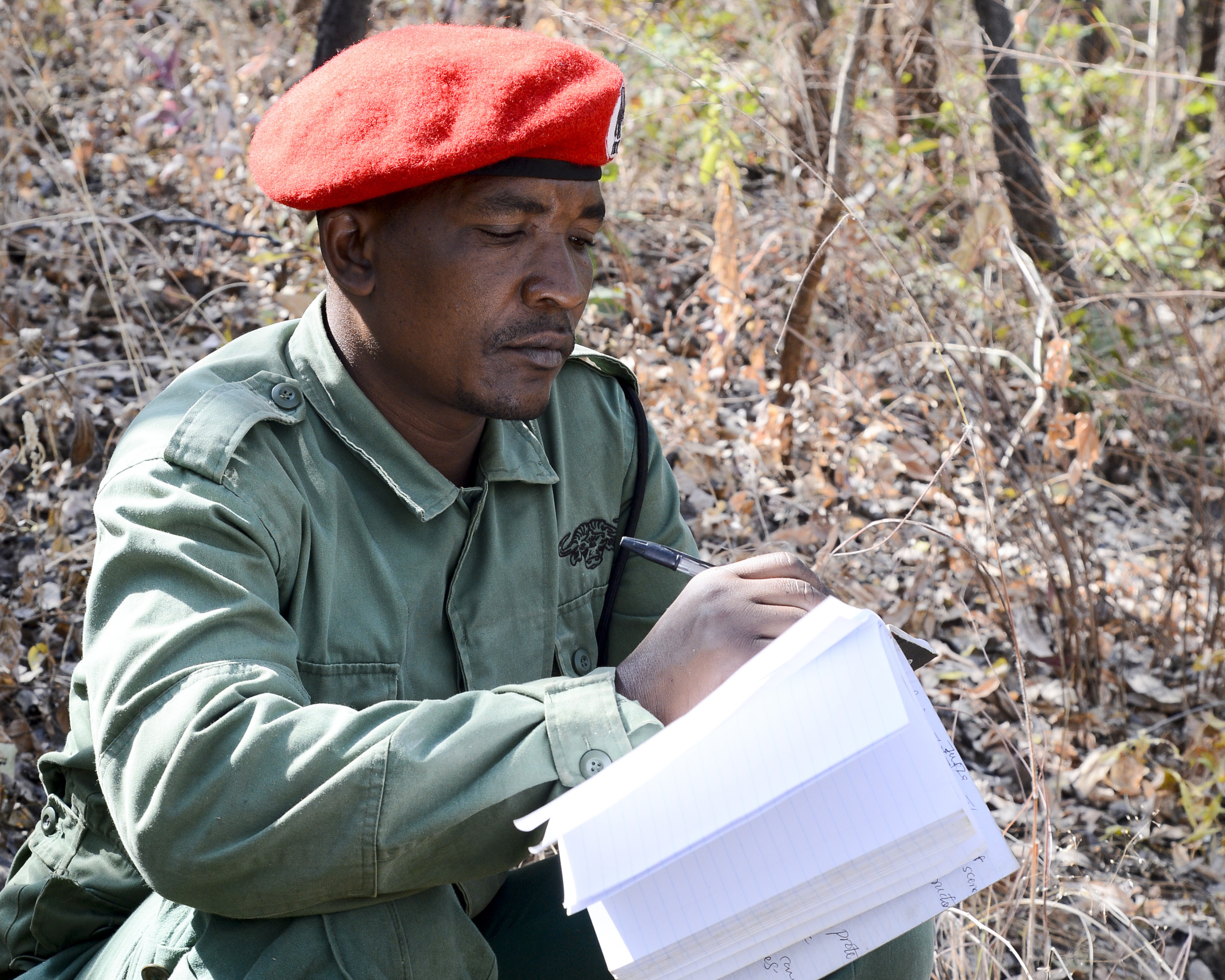 A Tanzania Wildlife Management Authority (TAWA) patrol game warden takes notes during a ground surveillance practical exercise during a Counter Illicit Trafficking course, in Ngwala, Tanzania, July 24, 2018. The course provided by U.S. Army Soldiers with the 404th Civil Affairs Battalion, assigned to Combined Joint Task Force-Horn of Africa is a month-long course to enhance TAWA's anti-poaching capabilities in Tanzania. (U.S. Navy Photo by Mass Communication Specialist 2nd Class Timothy M. Ahearn)