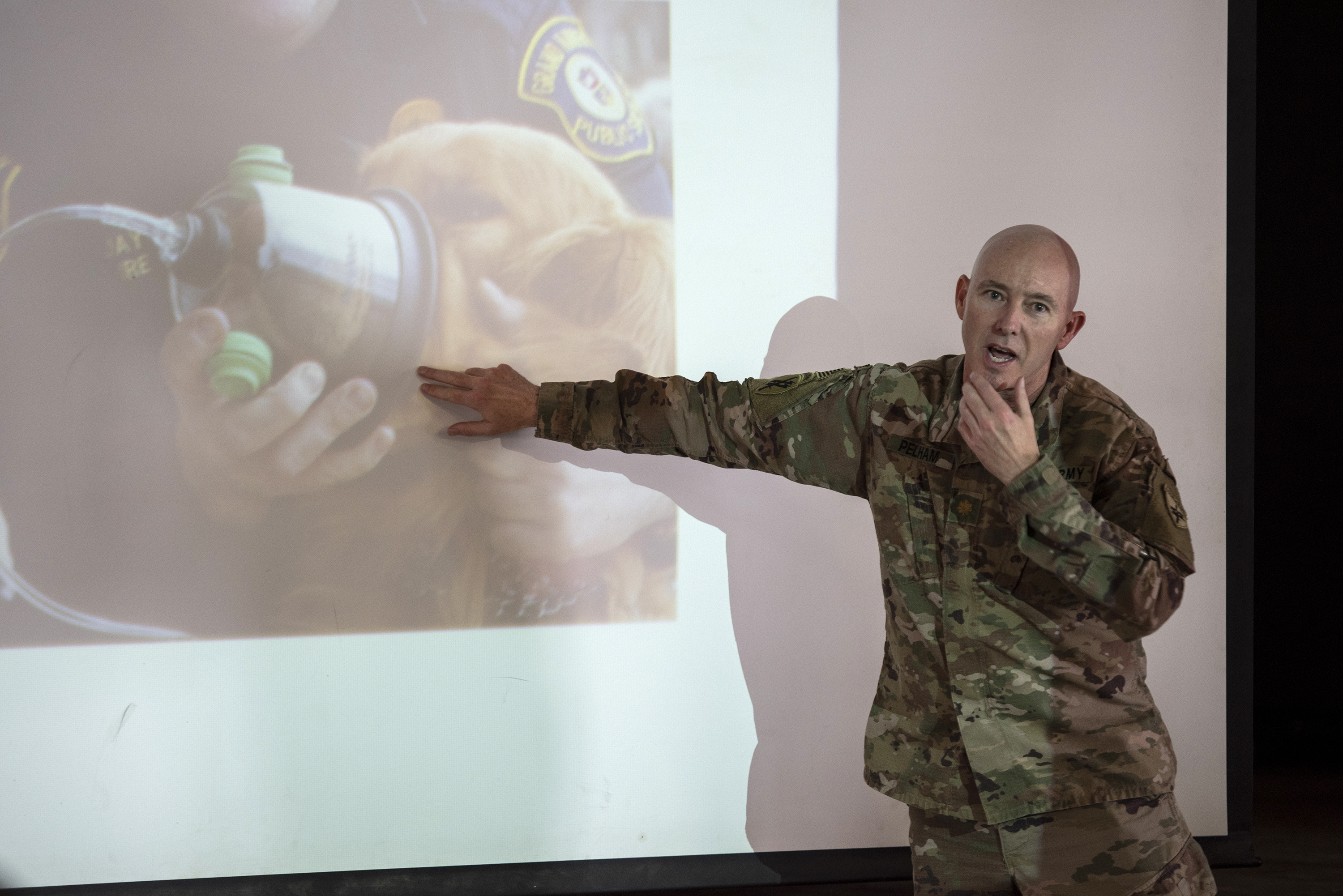 U.S. Army Maj. Steven Pelham, a veterinarian with the 404th Civil Affairs Battalion, Combined Joint Task Force - Horn of Africa, teaches canine care techniques on Camp Lemonnier, Djibouti, Aug. 18, 2018. Pelham was supporting a training event on canine tactical combat casualty care to help familiarize service members with medical backgrounds, on treating canines in the field. (U.S. Air National Guard photo by Master Sgt. Sarah Mattison)