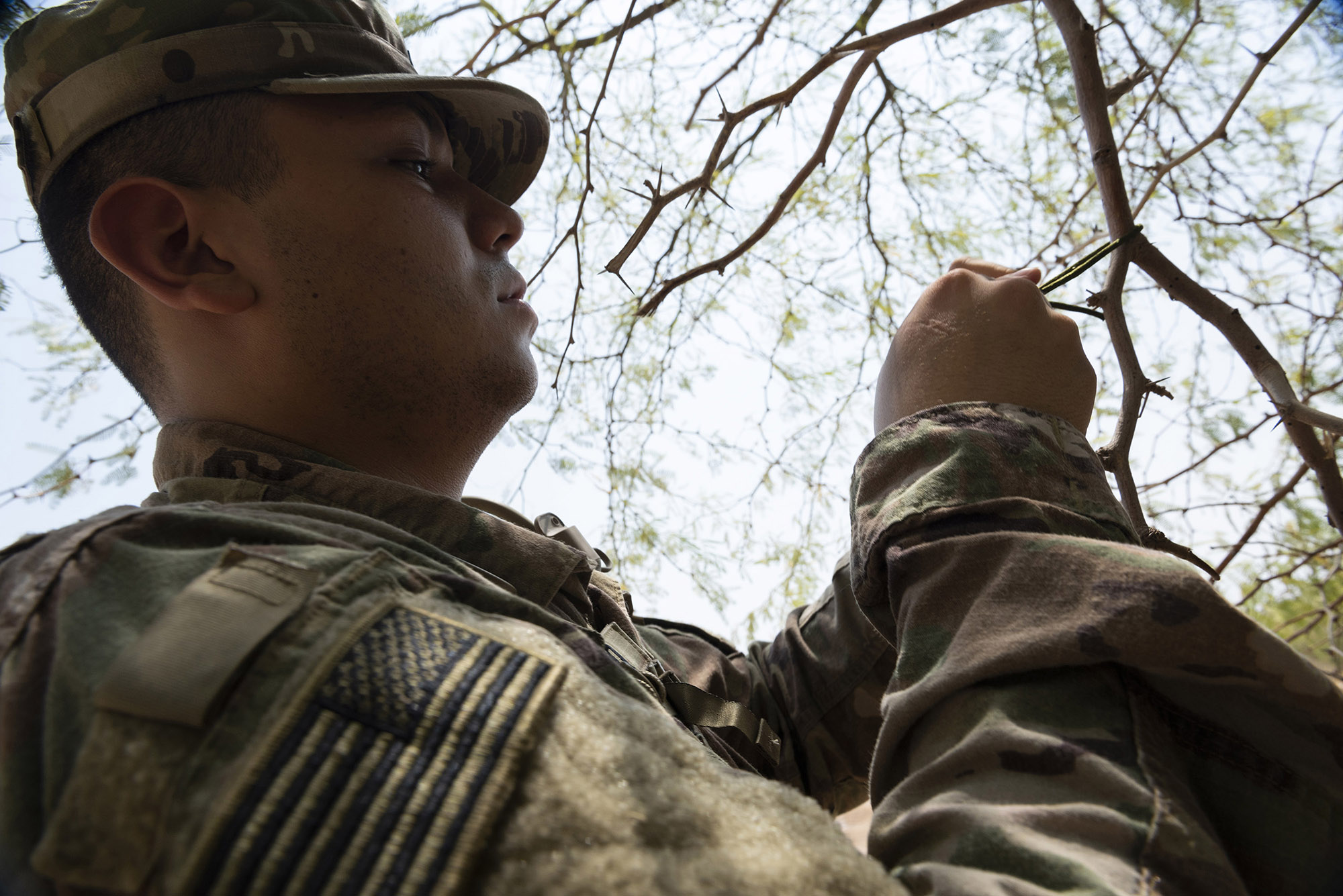 U.S. Army Pfc. Jonathan Galindo, a field artillery firefinder radar operator with 3rd Battalion, 133rd Field Artillery Regiment, Texas National Guard, practices tying various types of knots during survival skills training on Camp Lemonnier, Djibouti, Oct. 13, 2018. During this training, Galindo completed various tasks such as constructing a shelter, finding alternative water sources and signaling for rescue. (U.S. Air National Guard photo by Master Sgt. Sarah Mattison)